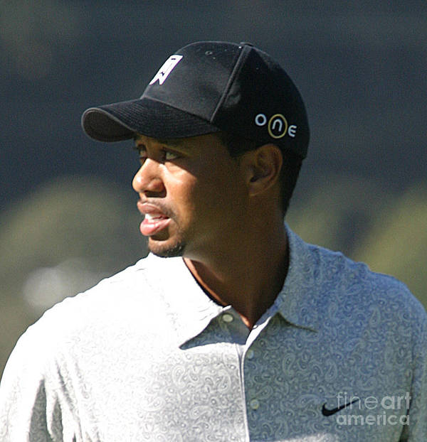 Tiger Print featuring the photograph Tiger Woods by Chuck Kuhn