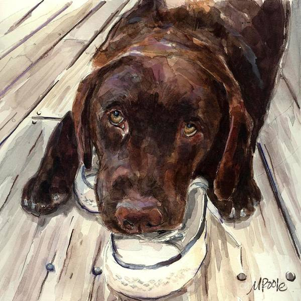 Chocolate Labrador Print featuring the painting Deckhand by Molly Poole