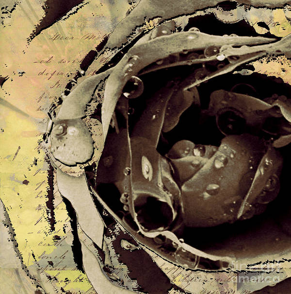 Print featuring the mixed media Life Iv by Yanni Theodorou