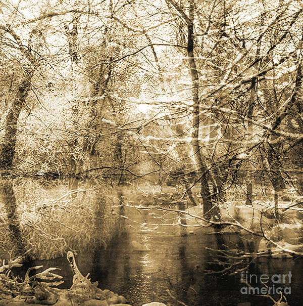 Print featuring the mixed media The Pond by Yanni Theodorou