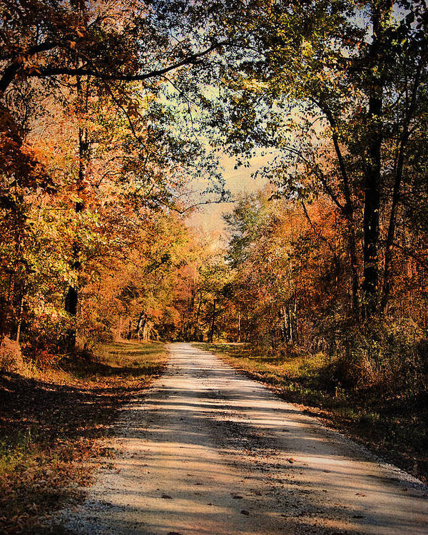 Autumn Print featuring the photograph Path To Nowhere by Jai Johnson