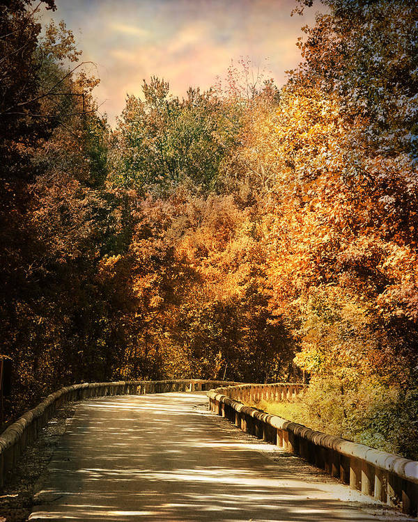 Autumn Print featuring the photograph Road To Paradise by Jai Johnson