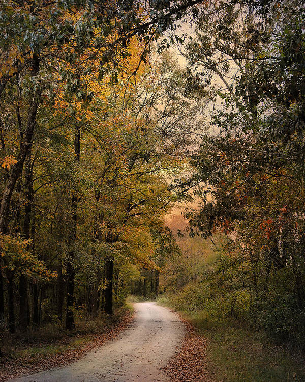 Autumn Print featuring the photograph The Path Less Traveled 2 by Jai Johnson