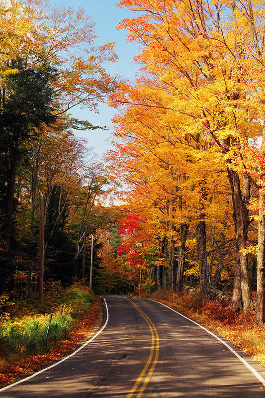 Autumn Print featuring the photograph Autumn Country Road by Joann Vitali