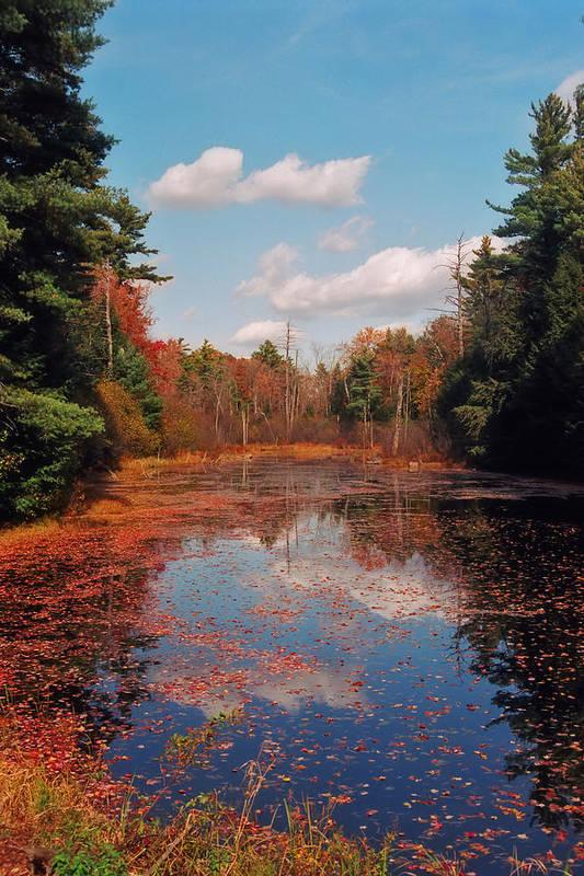 Autumn Print featuring the photograph Autumn Reflections by Joann Vitali