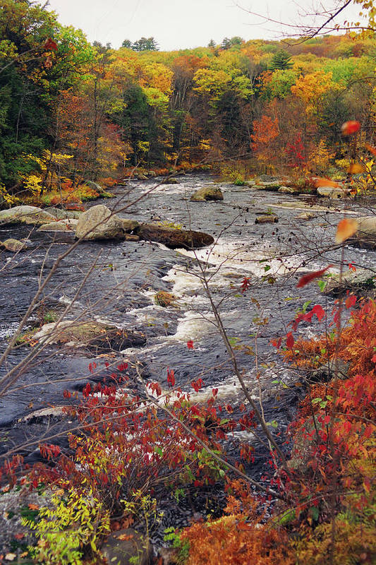 Autumn Print featuring the photograph Autumn River by Joann Vitali