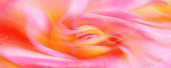 Rose Abstract Print featuring the photograph Joy - Rose by Ben and Raisa Gertsberg