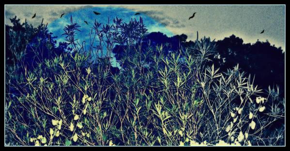 Landscape Print featuring the mixed media Back Yard Sky by YoMamaBird Rhonda