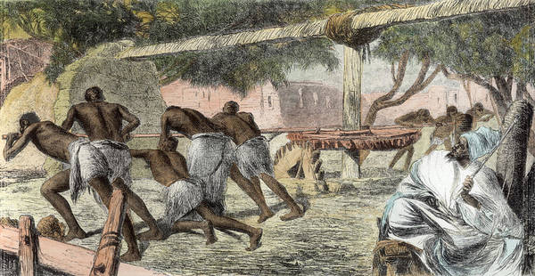 Slave Print featuring the drawing Slaves Irrigating By Water-wheel by English School