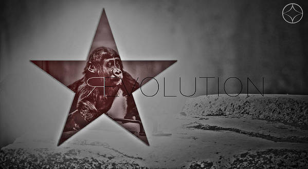 Apes Print featuring the photograph Revolution by Beni Cufi