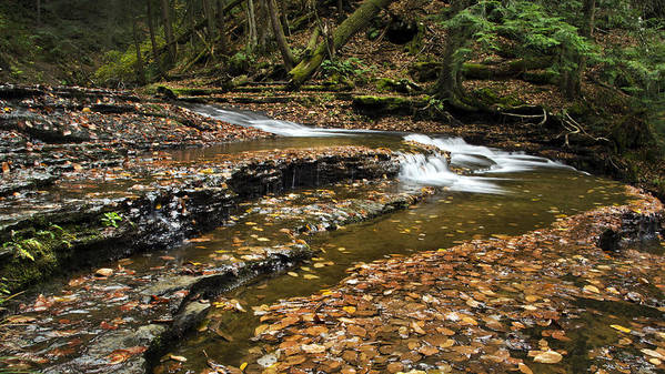 Waterfall Print featuring the photograph Meandering Waters by Christina Rollo