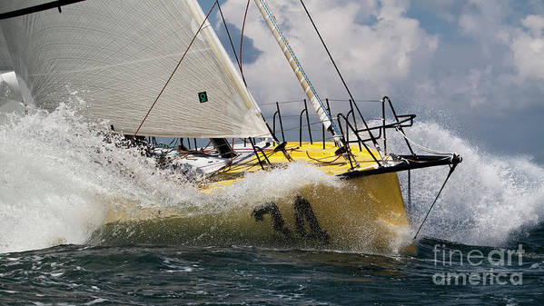 Sailboat Print featuring the photograph Sailboat Le Pingouin Open 60 Charging by Dustin K Ryan