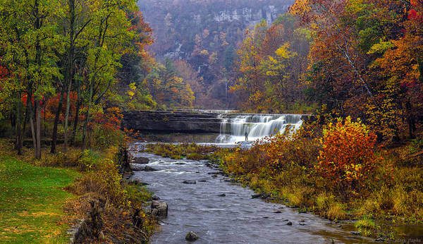 Taughannock Falls State Park Print featuring the photograph Falls Fishing by Mark Papke