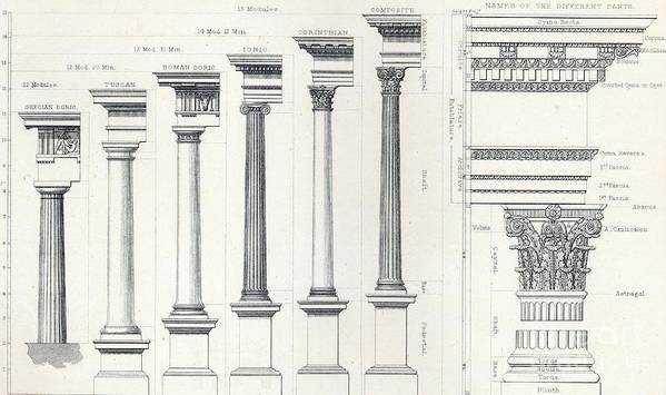 Modules; Order; Columns; Grecian Doric; Tuscan; Roman Doric; Ionic; Corinthian; Composite; Parts; Cyma Recta; Corona; Modillion; Echinus; Inverted Cyma Or Ogee; Cyma Reversa; Fascia; Abacus; Caulicoles; Astragal; Cornice; Frieze; Entablature; Architrave; Volute; Capital; Shaft; Base; Torus; Scotia; Plinth; Architectural Drawing; Proportion; Architecture; Classical Print featuring the drawing Architecture I Orders Of Architecture Engraved By Charles Lawrie by John Burley Waring