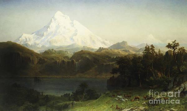 Mountain Print featuring the painting Mount Hood In Oregon by Albert Bierstadt