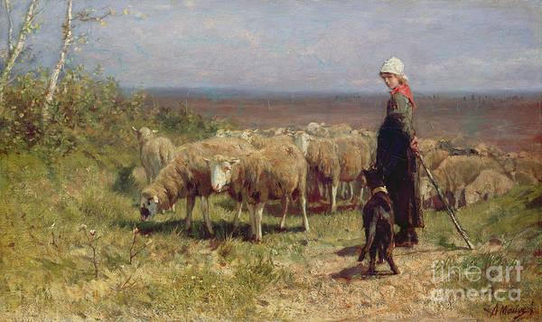 Shepherdess Print featuring the painting Shepherdess by Anton Mauve