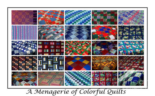 Quilts Print featuring the tapestry - textile A Menagerie Of Colorful Quilts by Barbara Griffin