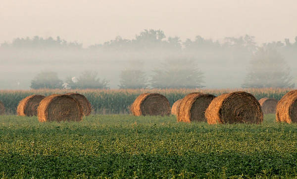 Haybale Print featuring the photograph Haybales by Sarah Boyd