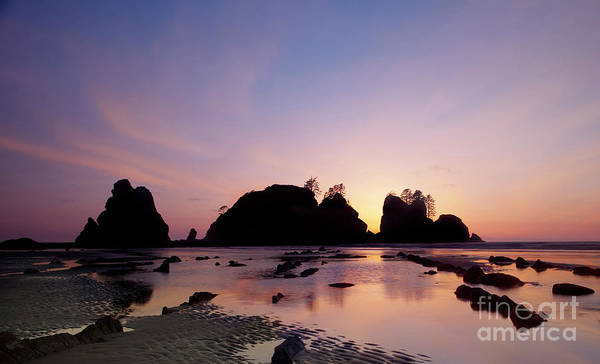 Water Photography Print featuring the photograph Shi Shi Beach by Keith Kapple