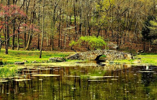 Arkansas Print featuring the photograph Arkansas Tranquility by Benjamin Yeager