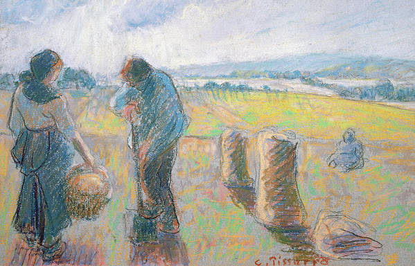 Agriculture Print featuring the pastel Peasants In The Fields by Camille Pissarro