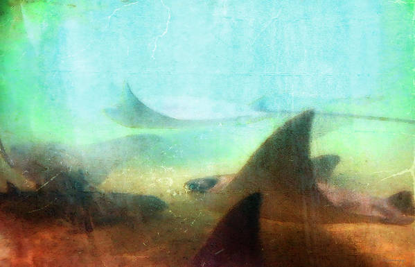 Ray Print featuring the painting Sea Spirits - Manta Ray Art By Sharon Cummings by Sharon Cummings