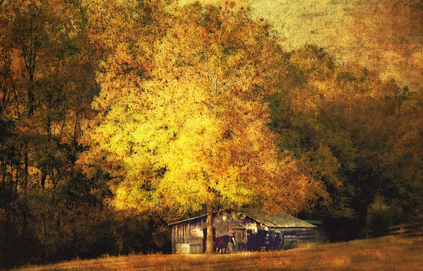 Barn Print featuring the photograph Horse Barn In The Shade by Kathy Jennings