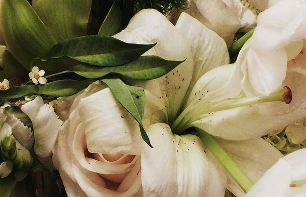 Lily Print featuring the photograph Spring Flowers by Anna Villarreal Garbis