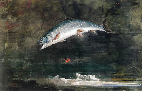 Winslow Homer Print featuring the digital art Jumping Trout by Winslow Homer