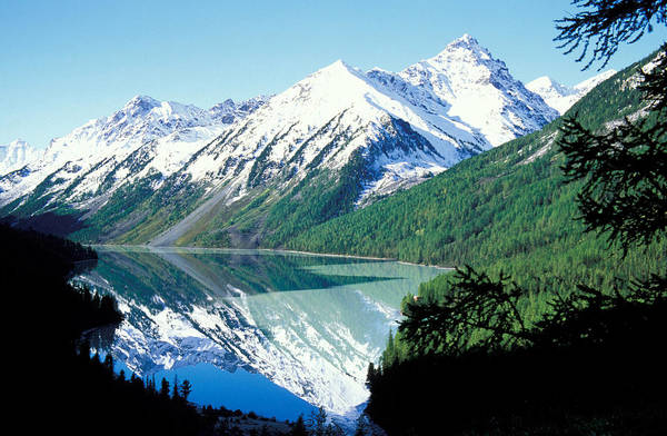 Forestland; Hills & Mountains; Landscape; Nature; Nobody; Outdoors; Outside; River; Scenery; Scenic; Scenics; Snow; Trees; Water; Woodland Print featuring the photograph Altai Mountains by Anonymous