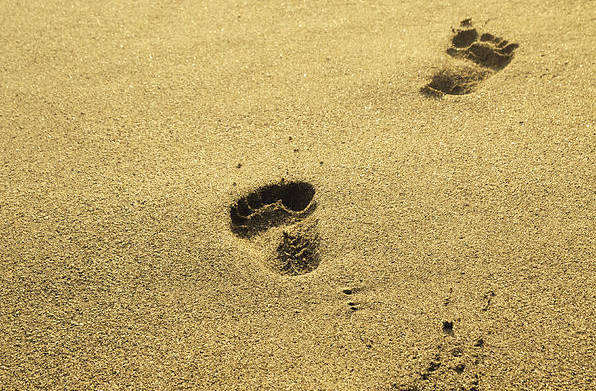 Sand Print featuring the pyrography Footprints In The Sand by Jelena Jovanovic