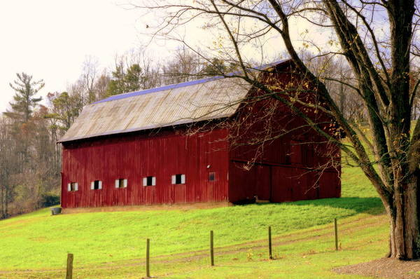 Red Barns Print featuring the photograph Old Red by Karen Wiles