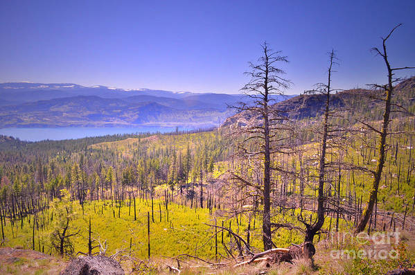 Mountain Print featuring the photograph A View From Okanagan Mountain by Tara Turner