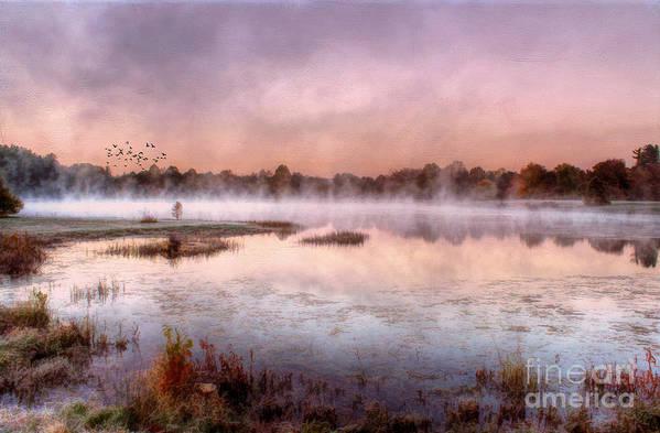 Bernheim Forest Print featuring the photograph Autumns Light by Darren Fisher