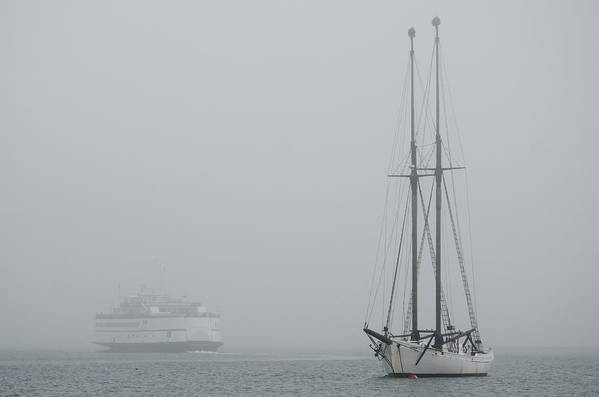 Fog Print featuring the photograph Into The Fog by Steve Myrick