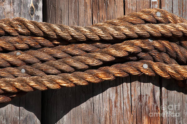 Rope Print featuring the photograph Roped by Dan Holm