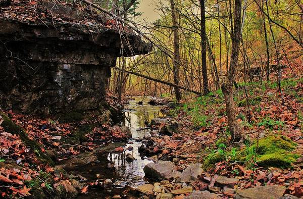 Arkansas Print featuring the photograph Slate Bottom Creek by Benjamin Yeager