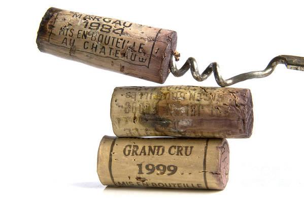 Cork Print featuring the photograph Cork Of French Wine by Bernard Jaubert