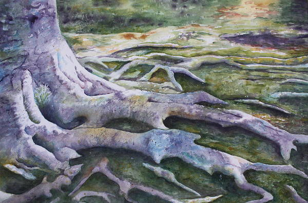 Tree Roots Print featuring the painting Dunbar Cave Roots by Patsy Sharpe