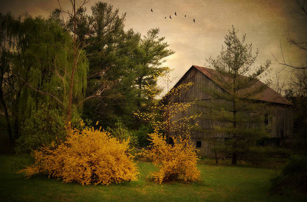 Barn Print featuring the photograph Early Spring by Kathy Jennings
