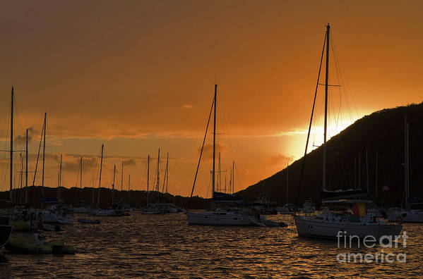 Trellis Bay Print featuring the photograph Caribbean Dawn by Louise Heusinkveld