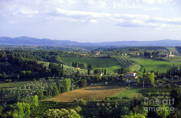 Chianti Print featuring the photograph Chianti Region In Italy by Gregory Ochocki and Photo Researchers