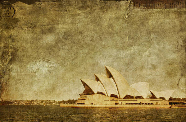Sydney Print featuring the photograph Guided Tour by Andrew Paranavitana