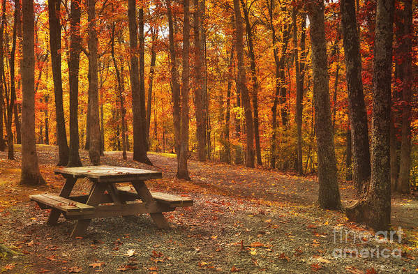 Fall Print featuring the photograph In The Park by Kathy Jennings
