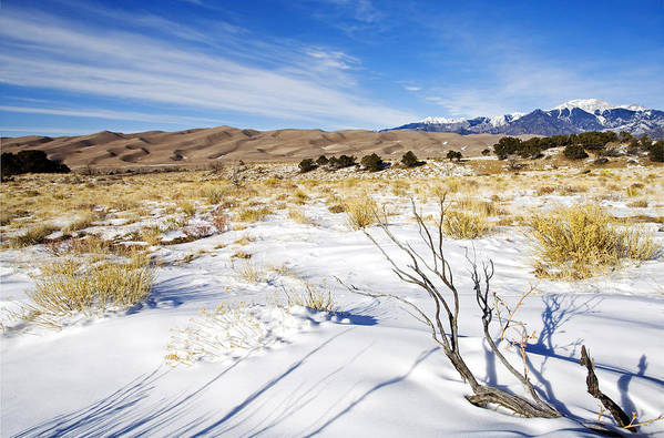 Snow Print featuring the photograph Sand And Snow by Mike Dawson