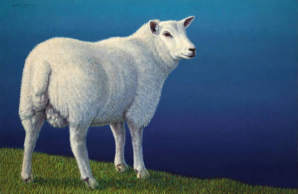 Sheep Print featuring the painting Sheep At The Edge by James W Johnson