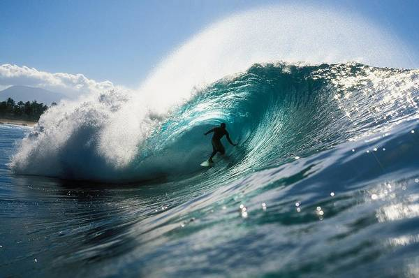 Adrenaline Print featuring the photograph Surfer At Pipeline by Vince Cavataio - Printscapes