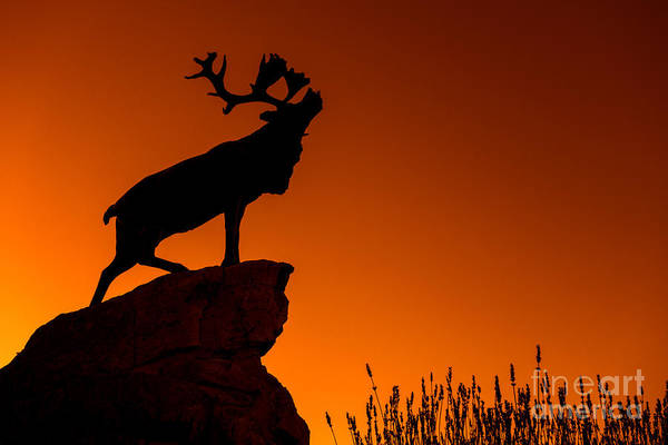 Statue Print featuring the photograph 130918p141 by Arterra Picture Library