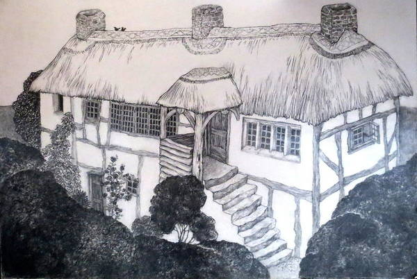 Garden Cottage Print featuring the drawing Garden Cottage by Diane Fine