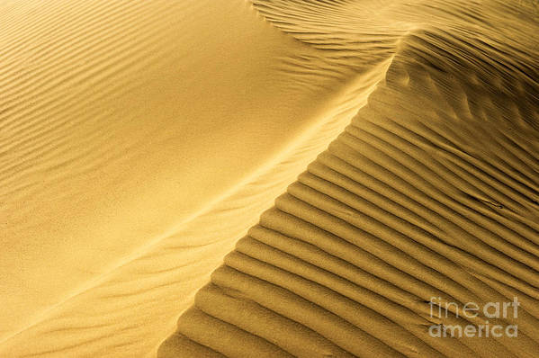 Dunes Print featuring the photograph Desert Sand Dune by Ezra Zahor